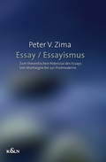 Essay / Essayismus