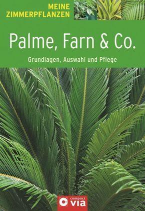 Palme, Farn & Co. - Grundlagen, Auswahl und Pflege