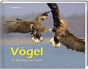 Vögel in Norddeutschland
