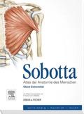 Atlas der Anatomie des Menschen: Obere Extremität