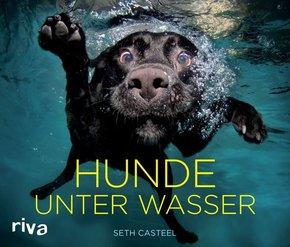 Hunde unter Wasser - Bildband