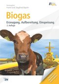 Biogas, m. DVD-ROM (eBook)