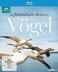 Die fantastische Reise der Vögel, 2 Blu-rays