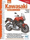 Kawasaki Versys 650 ccm