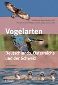 Vogelarten Deutschlands, Österreichs und der Schweiz - Nicht-Singvögel