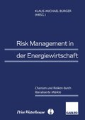 Risk Management in der Energiewirtschaft