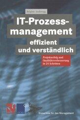 IT-Prozessmanagement effizient und verständlich