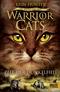 Warrior Cats, Die Macht der drei, Zeit der Dunkelheit