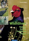 Wildhühner