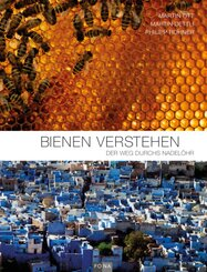 Bienen verstehen
