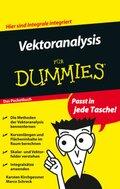 Vektoranalysis für Dummies. Das Pocketbuch