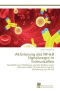Aktivierung des NF- B Signalweges in Immunzellen