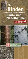 Die Rinden heimischer und kultivierter Laub- und Nadelbäume im Vergleich, Leporello