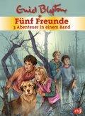 Fünf Freunde - 3 Abenteuer in einem Band, Fünf Freunde und das Teufelsmoor; Fünf Freunde und der Hexenring; Fünf Freunde