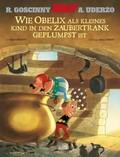 Wie Obelix als kleines Kind in den Zaubertrank geplumpst ist
