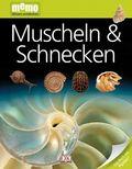 Muscheln & Schnecken