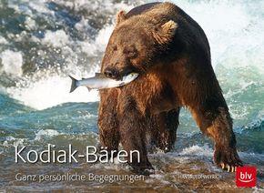 Kodiak-Bären