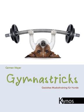 Gymnastricks