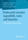 Kindeswohl zwischen Jugendhilfe, Justiz und Gutachter