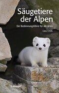 Säugetiere der Alpen