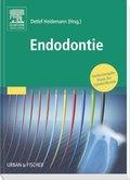 Praxis der Zahnheilkunde: Endodontie