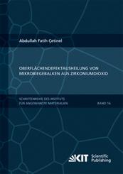 Oberflächendefektausheilung und Festigkeitssteigerung von niederdruckspritzgegossenen Mikrobiegebalken aus Zirkoniumdiox