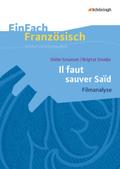 Didier Grousset/Brigitte Smadja: Il faut sauver Saïd: Filmanalyse