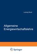 Allgemeine Energiewirtschaftslehre