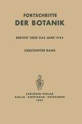 Bericht über das Jahr 1954