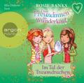 Drei Freundinnen im Wunderland. Im Tal der Traumdrachen, 1 Audio-CD