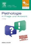 Pathologie in Frage und Antwort