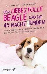 Der liebestolle Beagle und die 45 Nachthemden
