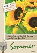 Sommer, m. Audio-CD u. CD-ROM