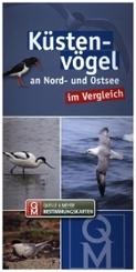 Küstenvögel an Nord- und Ostsee im Vergleich