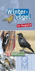 Wintervögel im Vergleich