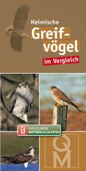 Heimische Greifvögel im Vergleich, Bestimmungskarte