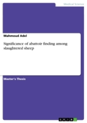 Significance of abattoir finding among slaughtered sheep