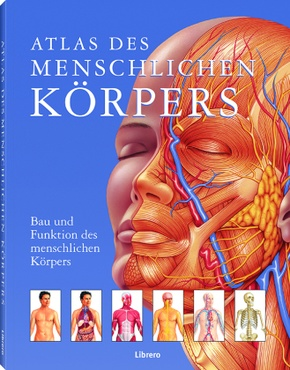 Atlas des menschlichen Körpers