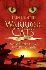 Warrior Cats, Special Adventure. Das Schicksal des WolkenClans