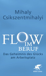 Flow im Beruf