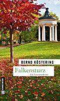 Falkensturz