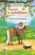 Ponyhof Apfelblüte (Band 3) - Lotte und Goldstück