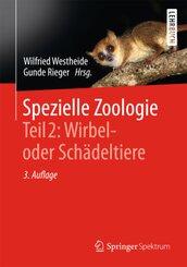 Spezielle Zoologie: Wirbeltiere- oder Schädeltiere