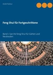 Feng Shui für Fortgeschrittene - Bd.1