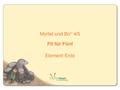 Myrtel und Bo: Klasse 4/5, Fit für Fünf, Modul 4: Element Erde