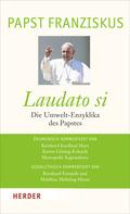 Laudato si - Die Umwelt-Enzyklika des Papstes