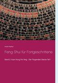 Feng Shui für Fortgeschrittene - Bd.2/1