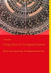 Feng Shui für Fortgeschrittene - Bd.3/2