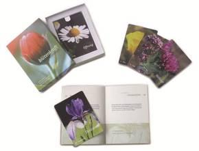Blütenkraft, Buch + 50 Karten