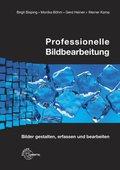 Professionelle Bildbearbeitung, m. CD-ROM